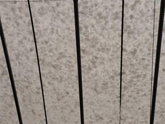 ビニールハウスに積もる雪