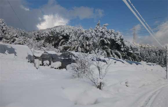 2017年1月下旬の大雪